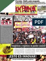 Campana News 368