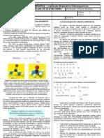 Ficha Complementar 1 - Introducao Ao Estudo Dos Compostos de Carbono