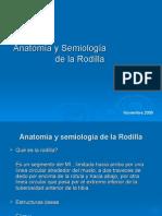 Anatomía y semiología de la Rodilla