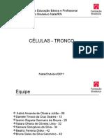 Projeto- No Modelo.ppt FEITO1