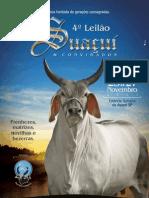 leilao_suacui