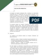 Informe de Evaluación Ambiental  Musga -Llama