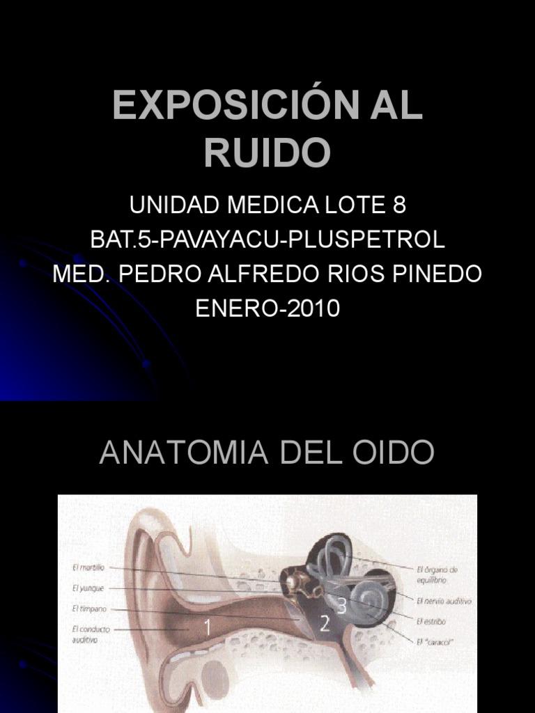 EXPOSICIÓN AL RUIDO