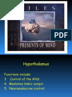 Hypothalamus-1