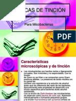 TÉCNICAS DE TINCIÓN