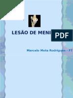 LESÃO DE MENISCO
