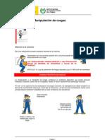 Manipulacion_cargas