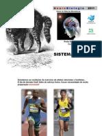 16_sistema_limbico