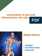 1.4.1 Slide Kit Pain & Inflammation