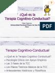 terapiacognitivoconductual-1222392179017388-8