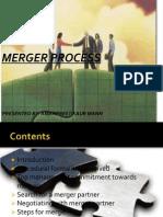 Merger Process(7)