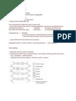 1. Gene Structure