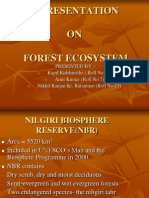Gp 2 Forest Ecosystem