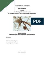 Practica de Lab Oratorio 1 Microbiologia