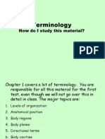 Terminology Tutorial