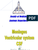 Meninges,ventricles,CSF