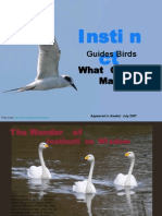 Instinct Guides Birds,What Guides Man