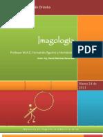 Imagologia Estudio Analisis Imagen Publica