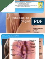 Patología vaginal Brenda y Ricardo