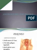 Anatomia Del Piso Pelvico.ppt Mago[1]