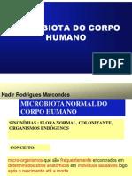 Microbiota Normal