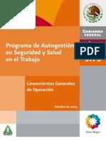 Lineamientos Generales 2008 PASST