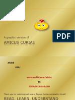 Graphic Amicus