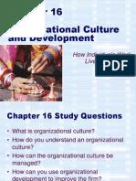 Chapter 10 - Organizational Culture