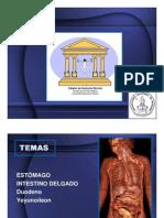 Seminario n 4.Estmago-Intestino Delgado 2011