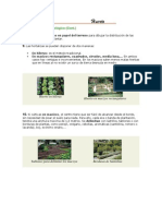 Diseño del huerto ecológico