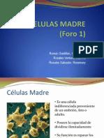 Foro 1 (Rosales Ventura, Roman an Rosales Salvador)