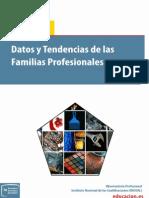 Datos y Tendencias Familias Profesionales