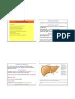 5no Fegato Pancreas