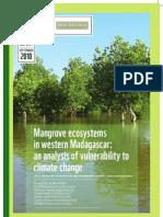 Mangrove ecosystems in western Madagascar