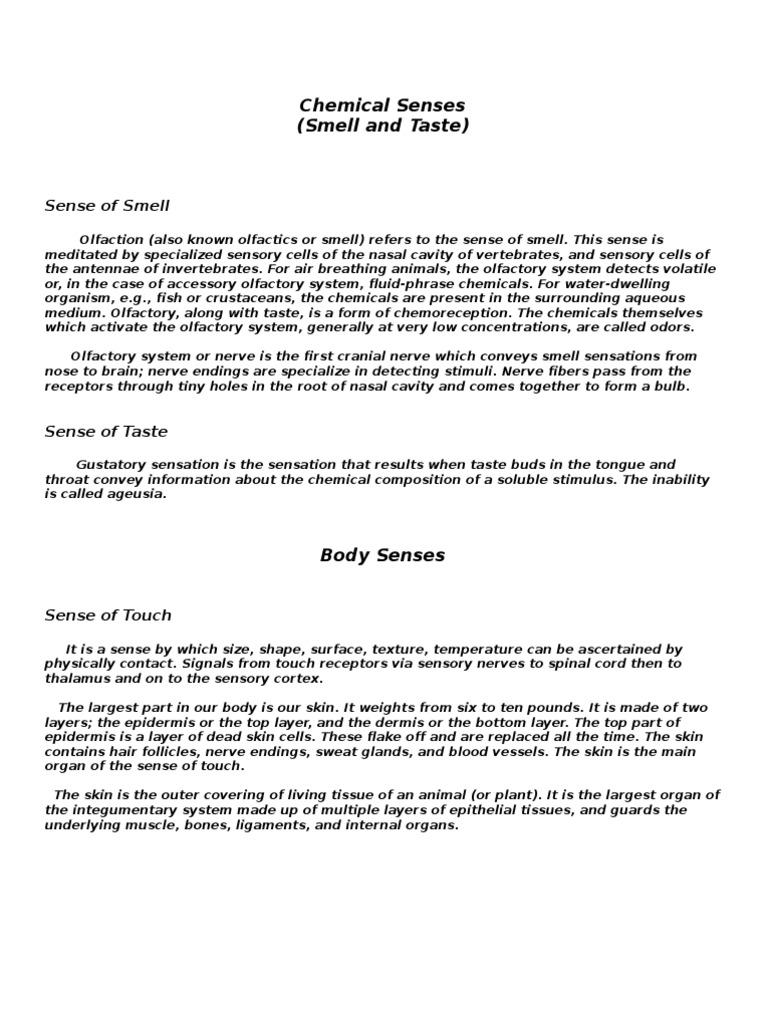Chemical Senses   Olfaction   Senses