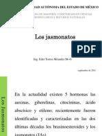 Los Jasmonatos