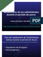 Metabolismo de Carbohidratos en El Periodo de Ayuno