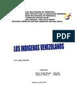 Trabajo Libre de Pueblos Indigenas
