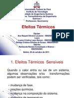Seminário de T.E.Q.I - Efeitos Térmicos