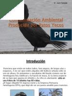 Contaminacion Ambiental Producida Por Patos Yecos