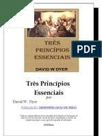 Tres Principios - Revisão 1