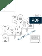 principiile didacticii