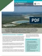 WWF FCS 18 Arrecife Mesoamericano - Corredor Calakmul-Sian Ka'an