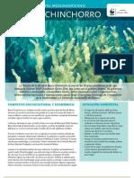 WWF FCS 17 Arrecife Mesoamericano - Banco Chinchorro