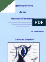 Exploración de genitales femeninos