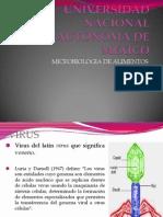 Micro Virus