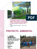 Sustentacion de Proyecto Ambiental