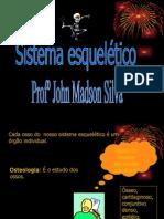 SISTEMA_Esqueletico