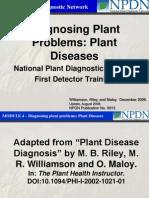 Diagnosing Plant Problems-Plant Diseases
