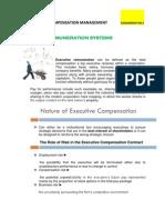Assignement Executive Remuneration